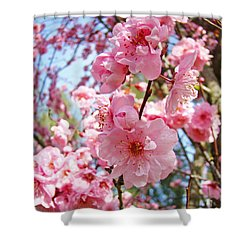 Spring Floral Art Prints Pink Tree Blossoms Shower Curtain by Baslee Troutman