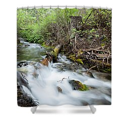 Shower Curtain featuring the photograph Spring Flow by Fran Riley