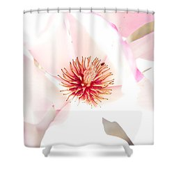 Spring Flower Blossoms Shower Curtain