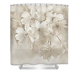 Shower Curtain featuring the photograph Spring Flower Blossoms Soft Brown by Jennie Marie Schell