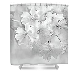 Shower Curtain featuring the photograph Spring Flower Blossoms Soft Gray by Jennie Marie Schell