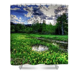 Shower Curtain featuring the photograph Spring Flowers by Bryan Carter
