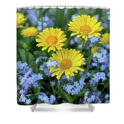 Spring Flowers Forget Me Nots And Leopard's Bane Shower Curtain by Henry Kowalski