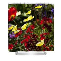 Spring Flowers Shower Curtain by Garry Gay