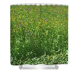 Spring Flowers In Meadow Shower Curtain