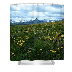 Spring Flowers On The Front Shower Curtain