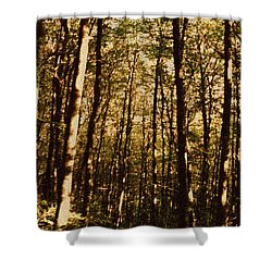Shower Curtain featuring the photograph Spring Forest by Jean Bernard Roussilhe