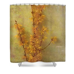 Spring Forsythia Shower Curtain