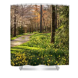 Spring Garden Path Shower Curtain