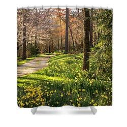 Spring Garden Path Shower Curtain