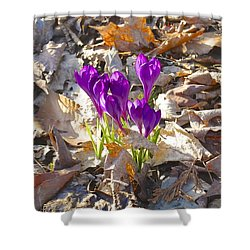 Spring Gathering Shower Curtain