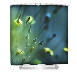 Shower Curtain featuring the photograph Spring Grass by Yulia Kazansky