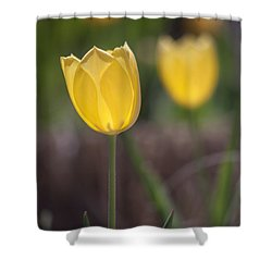 Spring Happiness Shower Curtain by Morris  McClung