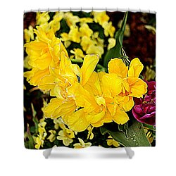 Shower Curtain featuring the photograph Spring In Dallas by Diana Mary Sharpton