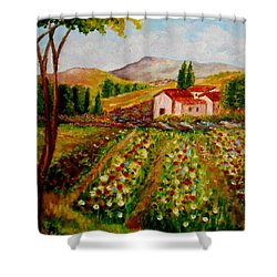 Spring In France Shower Curtain