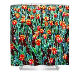 Spring In Holland Shower Curtain