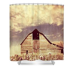 Shower Curtain featuring the photograph Spring In Kansas  by Julie Hamilton