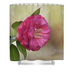 Shower Curtain featuring the photograph Spring In Savannah by Kim Hojnacki