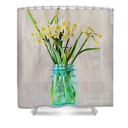Shower Curtain featuring the photograph Spring In The Country by Benanne Stiens