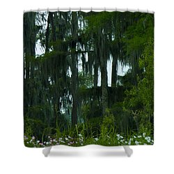 Spring In The Swamp Shower Curtain by Kimo Fernandez