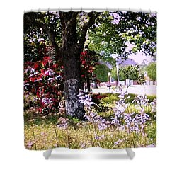 Spring In The Yard Shower Curtain