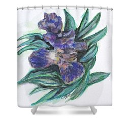 Spring Iris Bloom Shower Curtain by Clyde J Kell