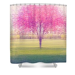 Spring Is A Blur Shower Curtain