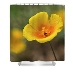 Shower Curtain featuring the photograph Spring Is Beckoning  by Saija Lehtonen