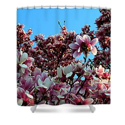 Spring Is Here Shower Curtain by Dorin Adrian Berbier