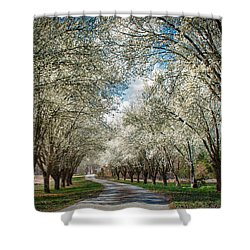 Shower Curtain featuring the photograph Spring Is Here by Mark Guinn