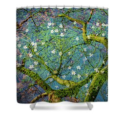 Spring Is In The Air-1 Shower Curtain