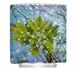 Spring Is In The Air-3 Shower Curtain