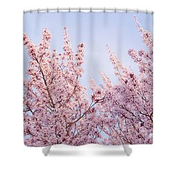 Shower Curtain featuring the photograph Spring Is In The Air by Ana V Ramirez