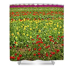 Spring Is In The Air Shower Curtain