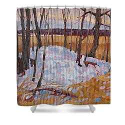 Spring Island Shower Curtain by Phil Chadwick