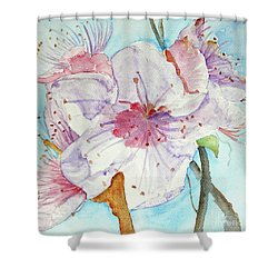 Shower Curtain featuring the painting Spring by Jasna Dragun