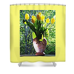 Spring Shower Curtain by Joy Nichols