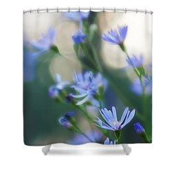 Spring Shower Curtain by Kate Livingston