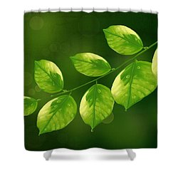 Shower Curtain featuring the painting Spring Life by Veronica Minozzi
