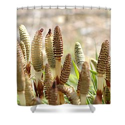 Shower Curtain featuring the photograph Spring Macro4 by Jeff Burgess