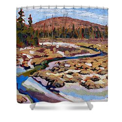 Spring Marsh Algonquin Shower Curtain