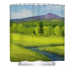 Shower Curtain featuring the painting Spring Meadow Brook by Frank Wilson