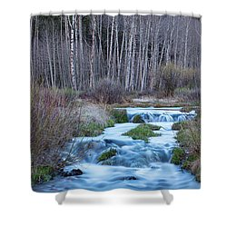 Spring Melt Off Flowing Down From Bonanza Shower Curtain by James BO Insogna