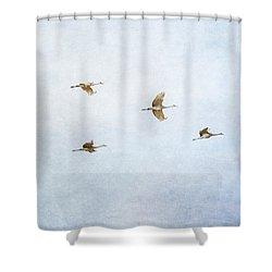Spring Migration 4 - Textured Shower Curtain