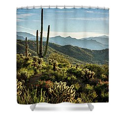 Shower Curtain featuring the photograph Spring Morning In The Sonoran  by Saija Lehtonen