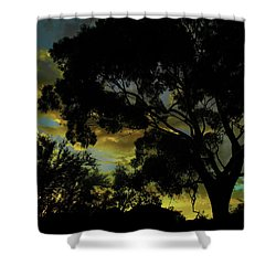 Spring Morning Shower Curtain by Mark Blauhoefer