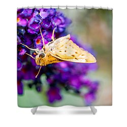 Spring Moth Shower Curtain