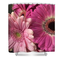 Spring N Winter Shower Curtain