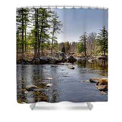 Shower Curtain featuring the photograph Spring Near Moose River Road by David Patterson