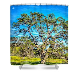 Spring Oak Moon Rise Shower Curtain